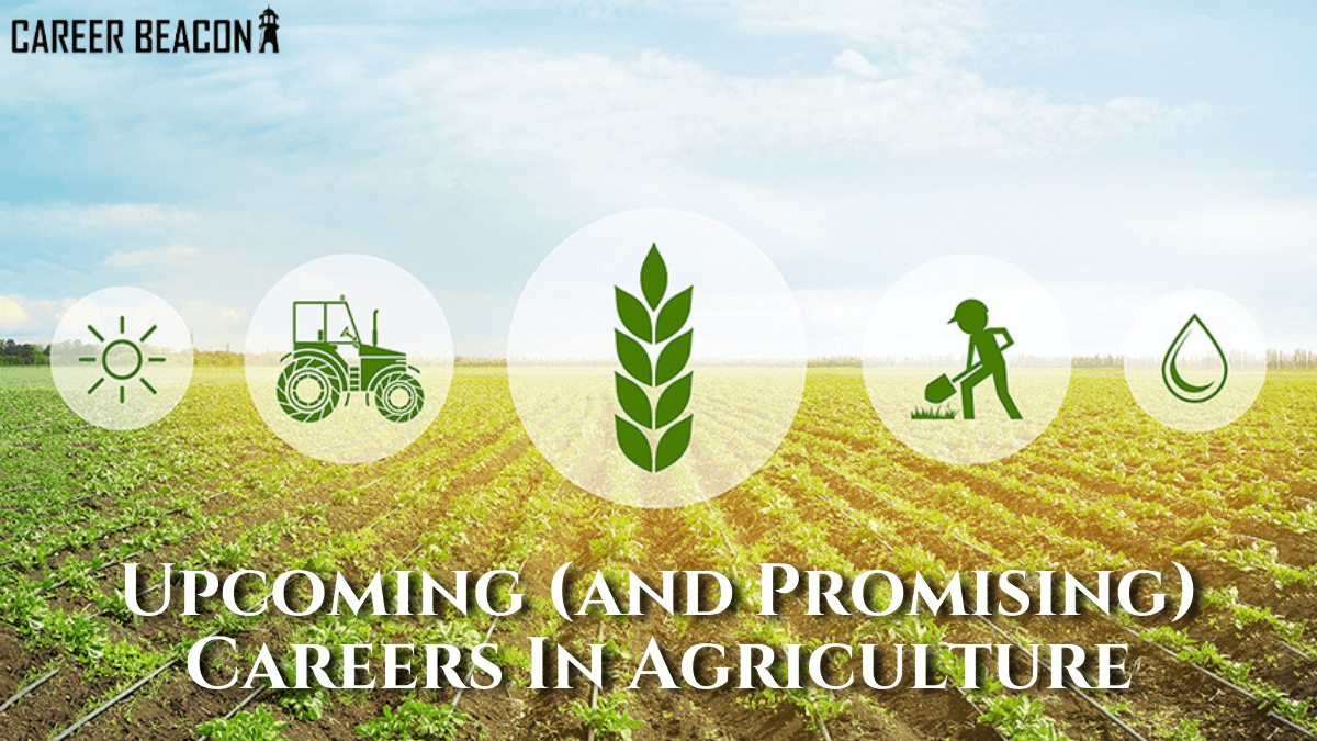 Upcoming and Promising Careers in Agriculture